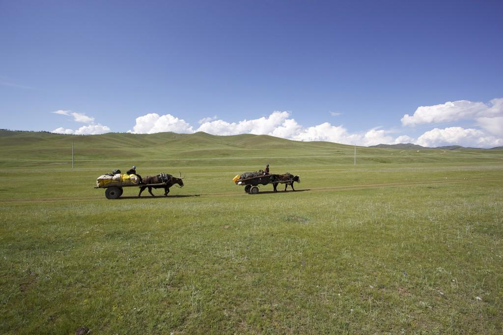 Nomaden Mongolei, Reisebericht Transsibirische Eisenbahn mit Kind, Erfahrungsbericht Reiseblog