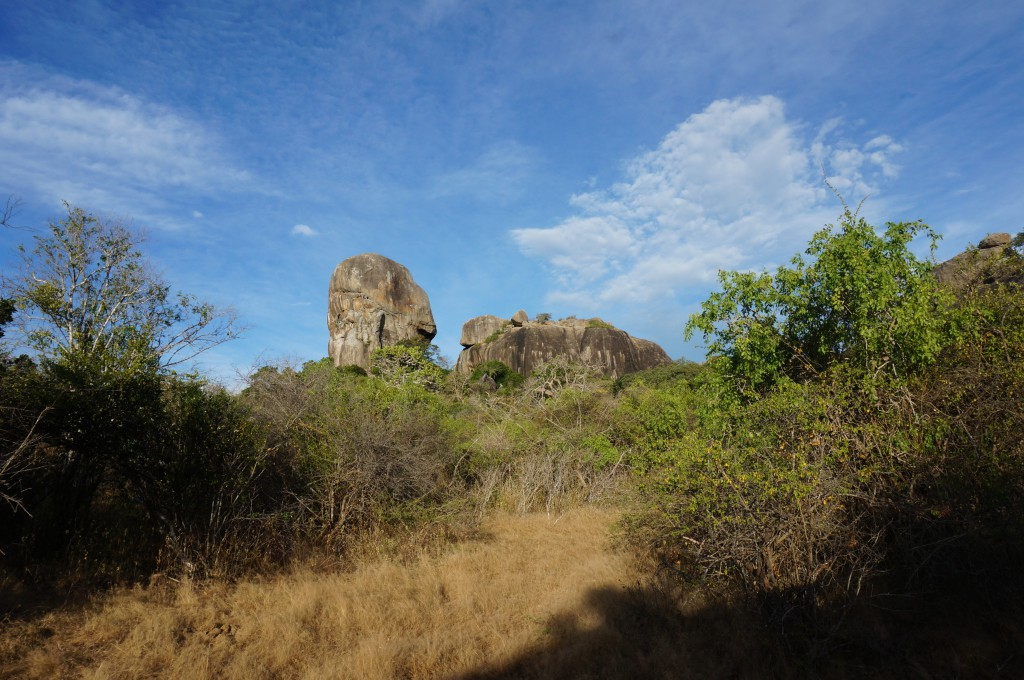 Gala Nationalpark Rundreise Sri Lanka