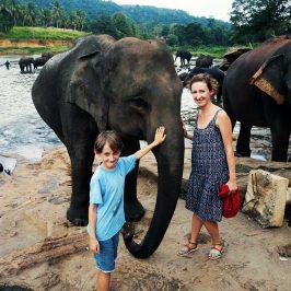 Reiseroute für zwei Wochen Rundreise Sri Lanka mit Kind