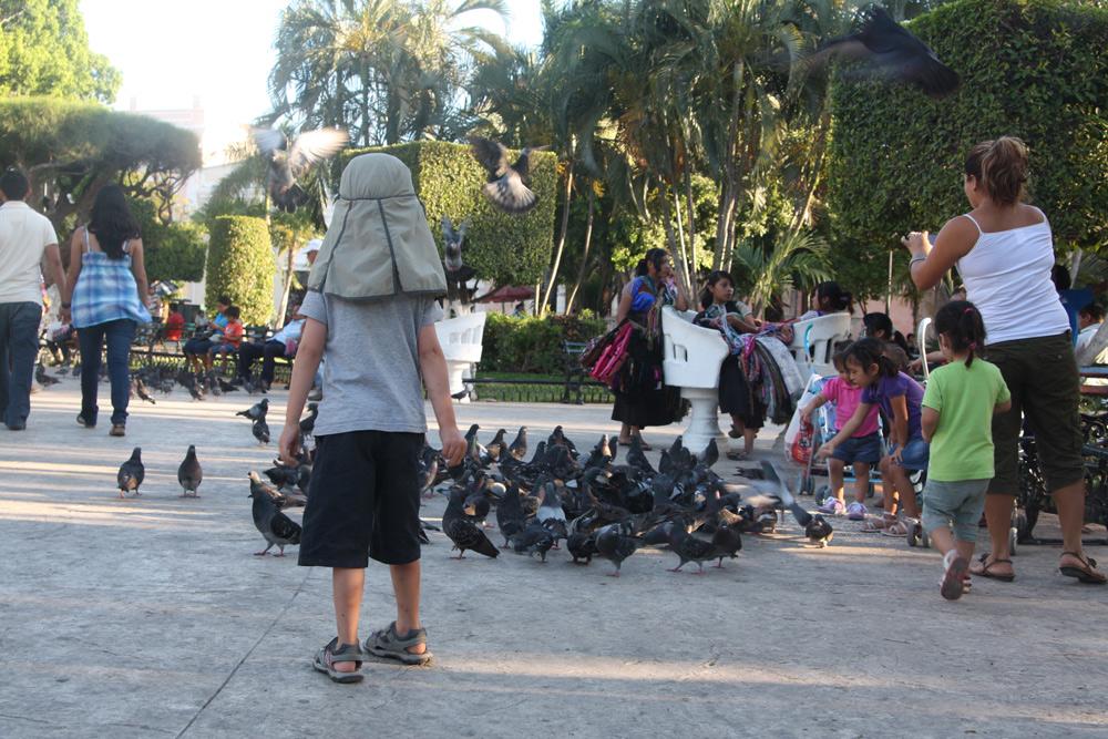 Mexiko Rundreise Yucatan mit Kindern Urlaub Merida