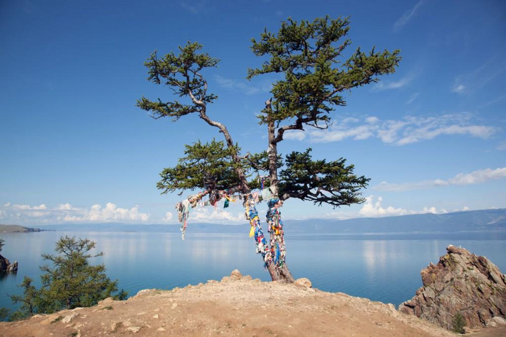 Baikalsee Schamanen Baum