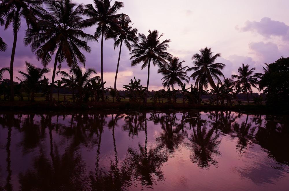 Backwaters in Kerala Hausboot Tour Hausboottour Indien Südindien