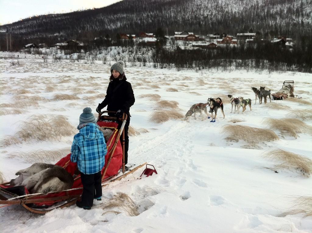 Hundeschlitten Norwegen
