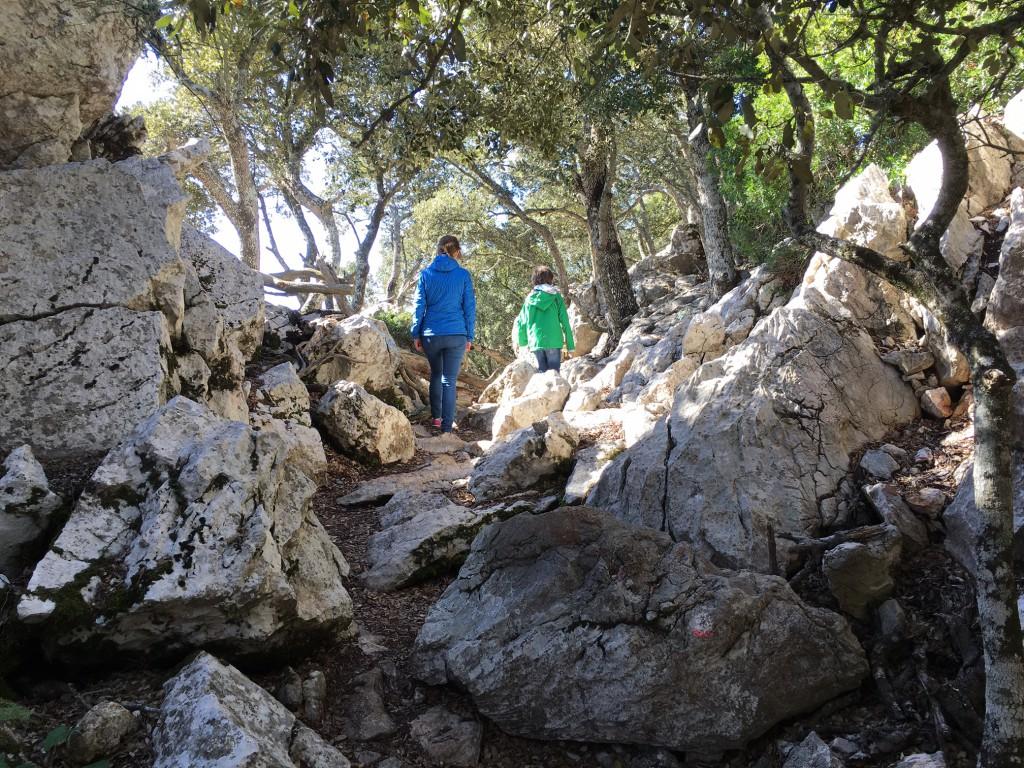 Wandern auf Mallorca, Reisebericht verlängertes Wochenende mit Kind Mallorca