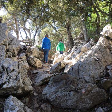 Kurzurlaub in Valldemossa – Wandern auf Mallorca mit Kind