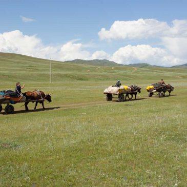 Urlaub Mongolei mit Kindern – Wandern und Reiten im Gorkhi Terelj National Park