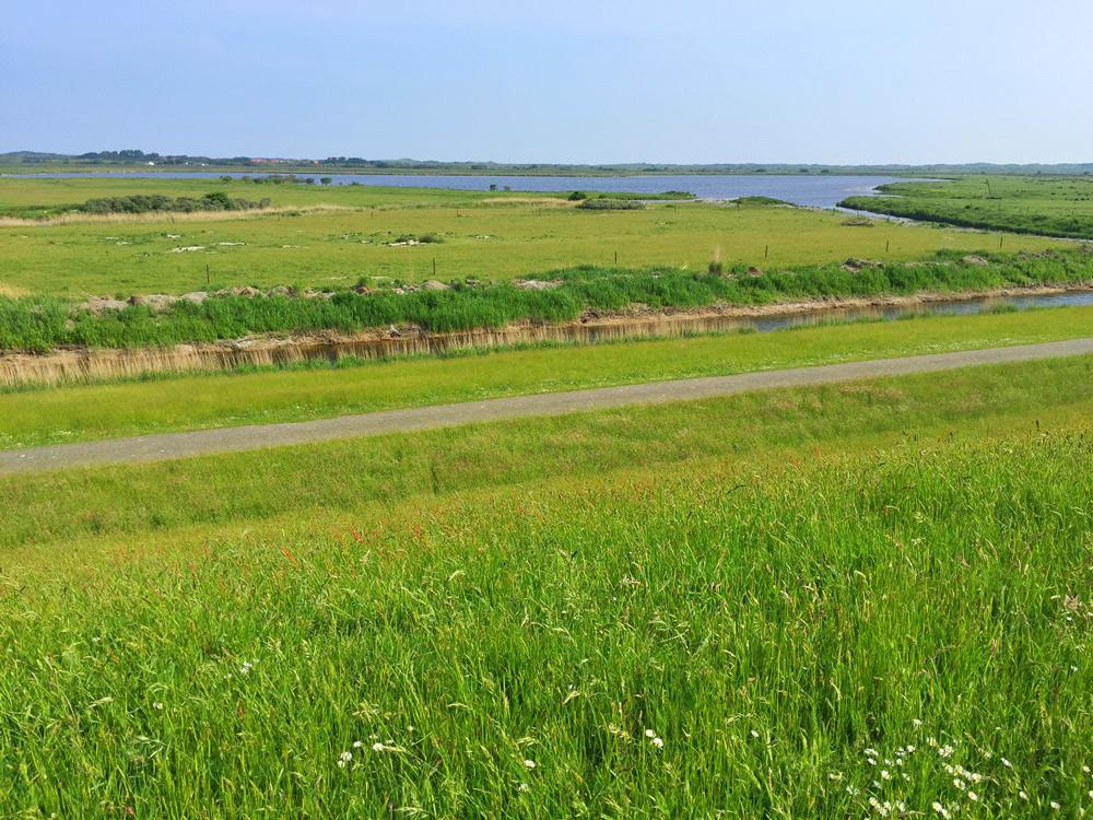 Borkum Landschaft Insel, Jugendherberge Borkum,  Nordsee Urlaub mit Kindern günstig