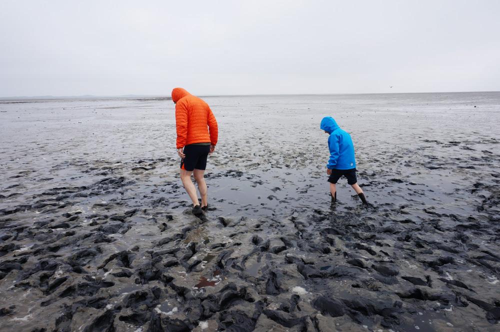 Wattwanderung Wattenmeer, Kurzurlaub mit Kindern in Deutschland günstig