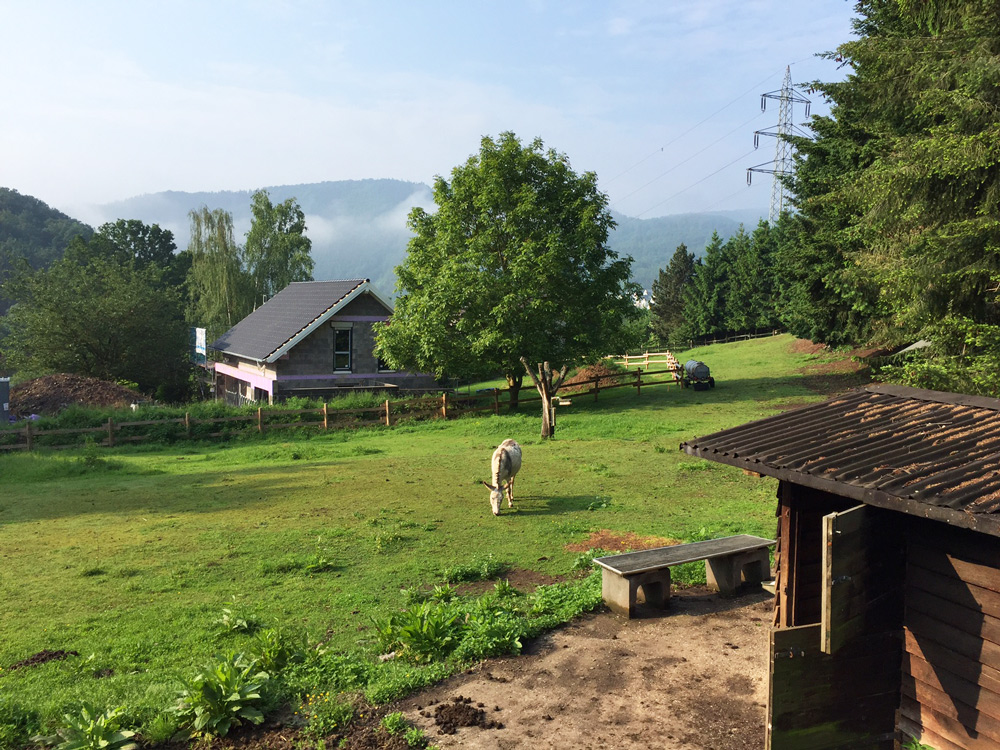 Ausflugsziele im Nationalpark Eifel Haus Dielenbach