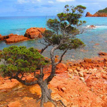 Sardinien mit Kindern: 5 Orte, die Du gesehen haben musst.