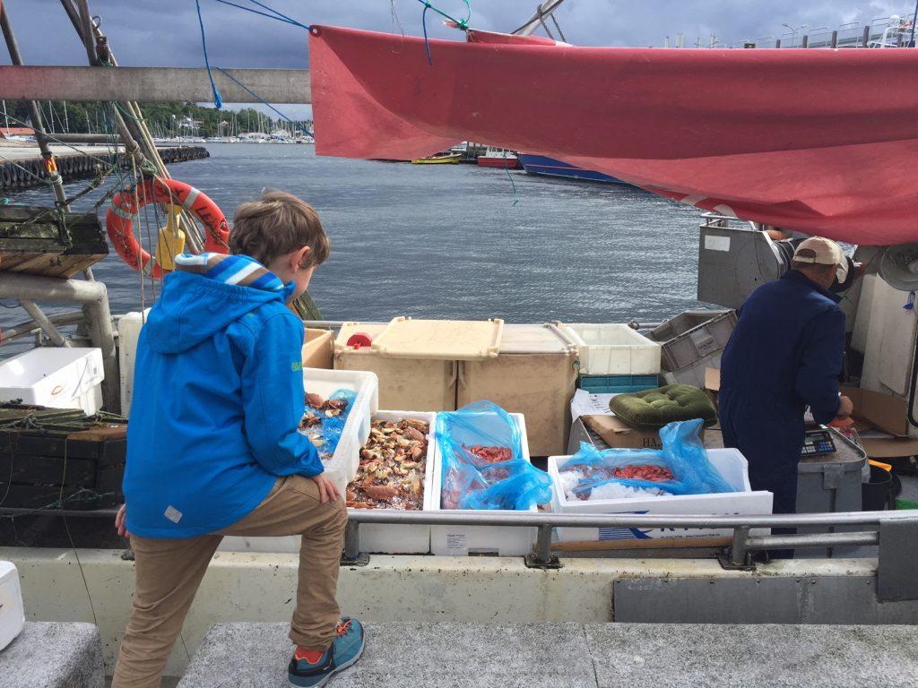Hafen Stavanger Fischer Krabben