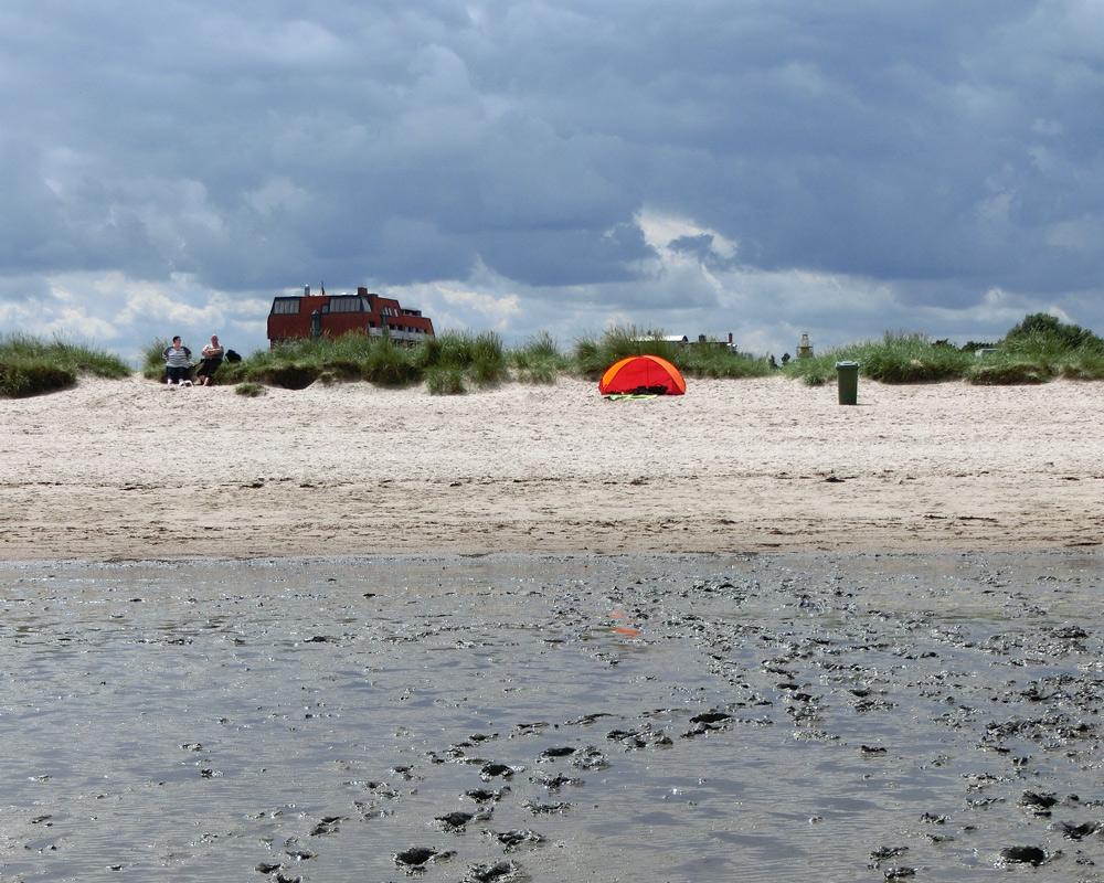 Familienurlaub im Wangerland Urlaub in Deutschland Nordsee mit Kindern, Damm, Wattenmeer, Reisen mit Kind, Hundestrand Wangerland