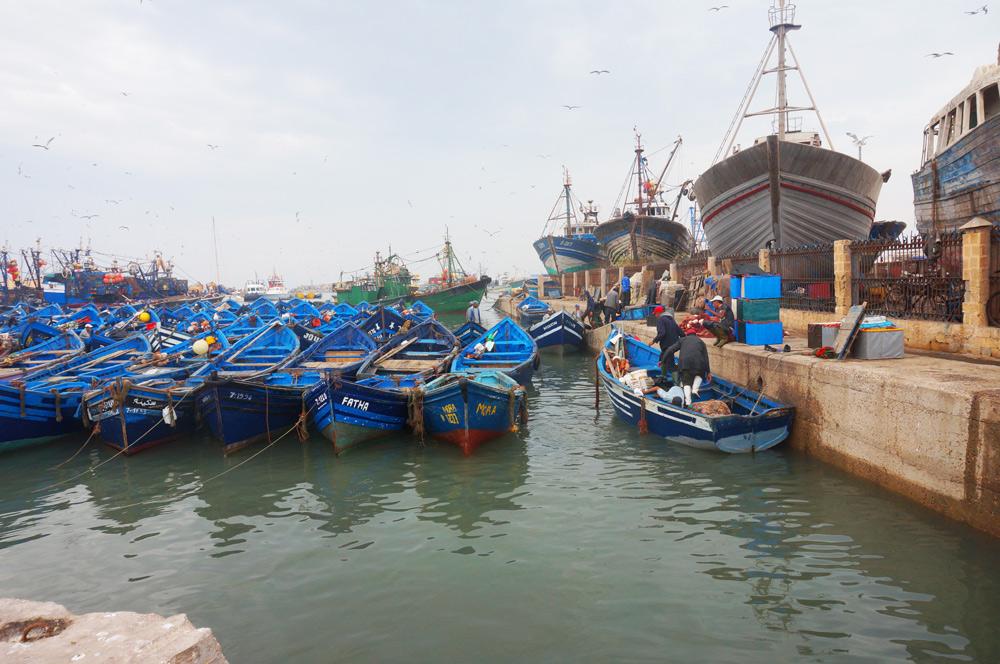 Sehenswürdigkeiten Essaouira mit Kind reisen. Hafen