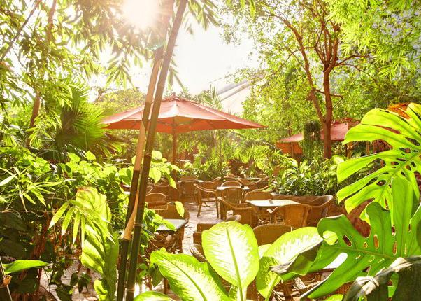 tropical-islands-online-gewinnspiel