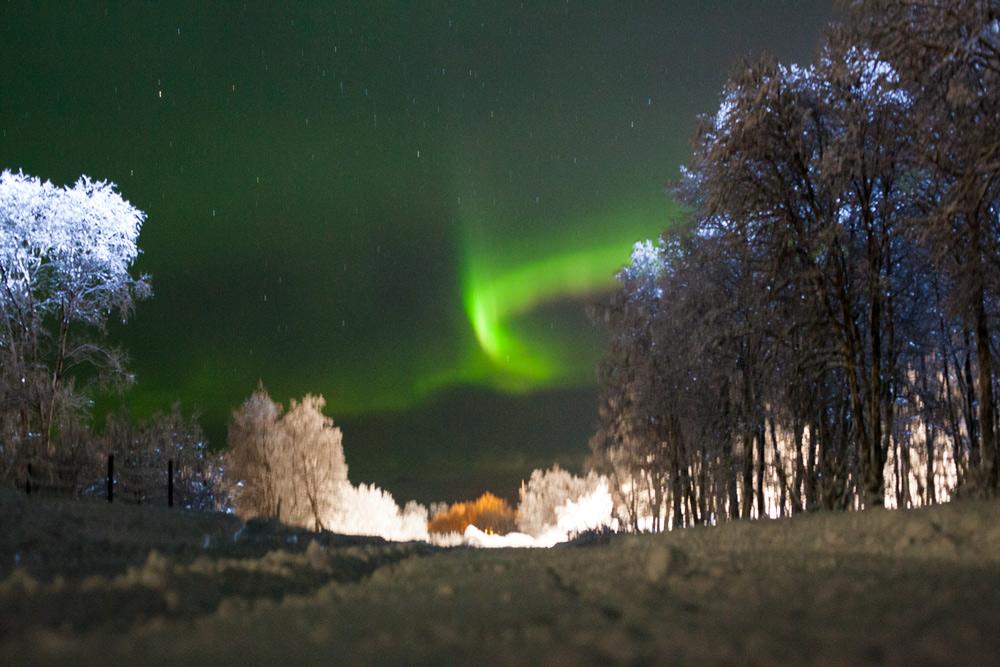 Nordlichter Schweden, Skiurlaub in Schweden mit Kind Skigebiet Hemavan Tärnaby Pisten Übernachten Kosten Langlauf. Sonne, Schnee, Kälte im Dezember