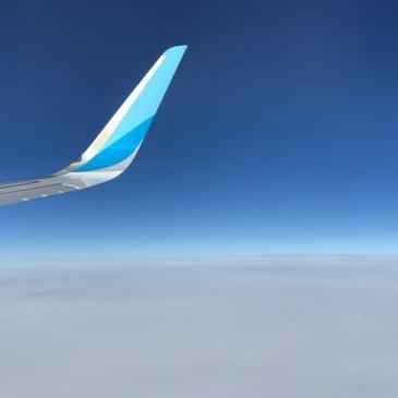 Fliegen mit Baby – Tipps, Airlinebestimmungen und Packliste