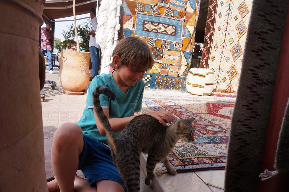Marrakesch mit Kind Urlaub Marokko mit Kind Herbstferien wo es im Oktober noch warm ist.