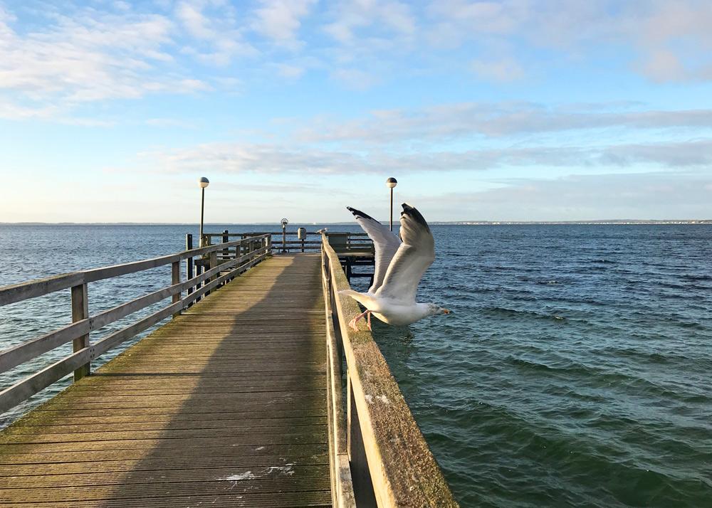 Aktivitäten Lübecker Bucht mit Kind im Herbst. Ostsee mit Kind in der Nebensaison. Urlaub Ostsee Tipps