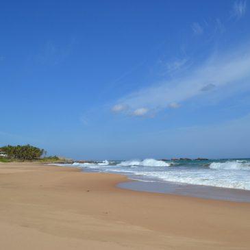 Reiseblogger verraten ihre Lieblingsorte in Sri Lanka – Sri Lanka Highlights