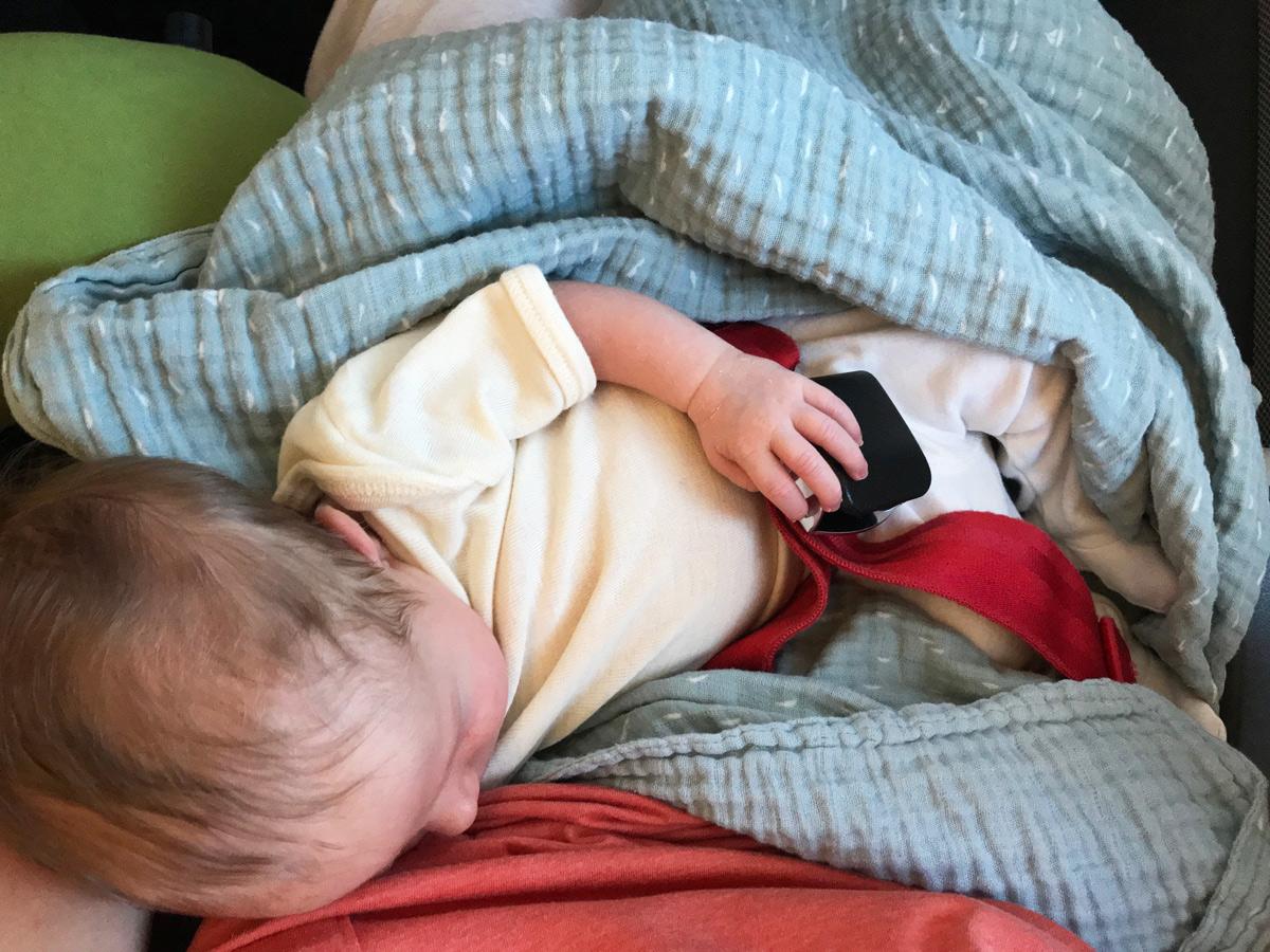 Fliegen mit Baby und Kleinkind Airlinebestimmungen Loop Belt, Fliegen mit Baby