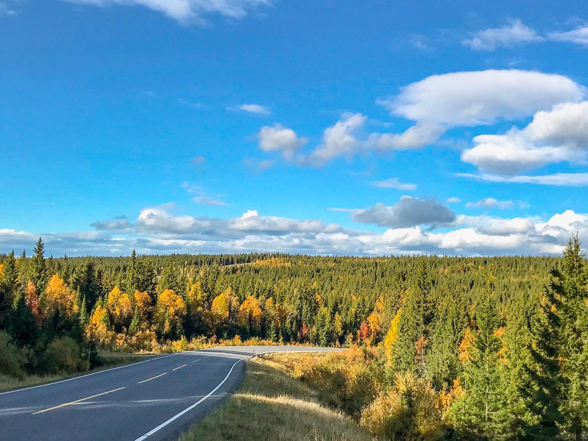 Herbst in Norwegen, Auswandern nach Norwegen mit Kind. Tipps, für einen günstigen Norwegen Urlaub.