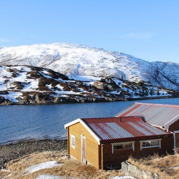 Nachhaltiger Urlaub mit Kind im Ferienhaus inmitten der Natur – Nachhaltig leben