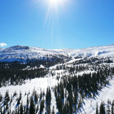 Norwegen Skiurlaub – In Trysil fahren Kinder gratis.
