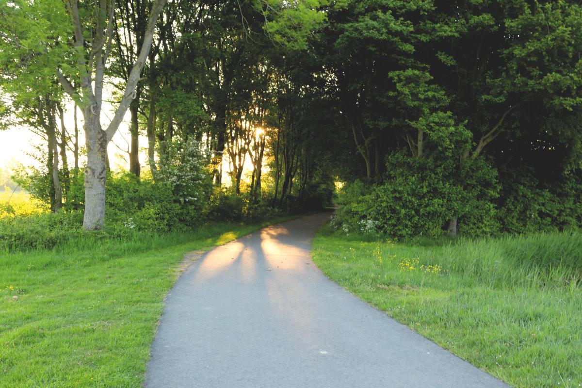 de biesbosch Nationalpark, Urlaub in Holland mit Kindern, Reiseblog, Tipps Kurzurlaub Holland
