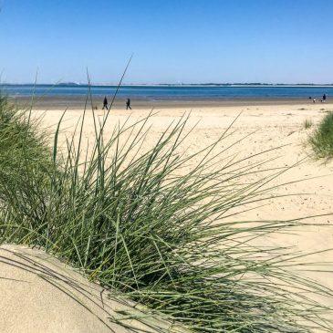 Wo ist Holland am schönsten? – Drei Ideen für den Natur Urlaub in Holland