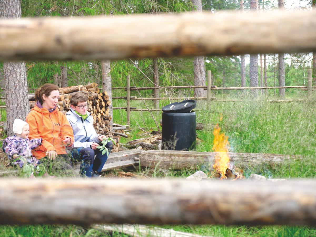 Finnisch-Lappland - Die besten Aktivitäten in Rovaniemi im Sommer. Rentiere Santa Claus
