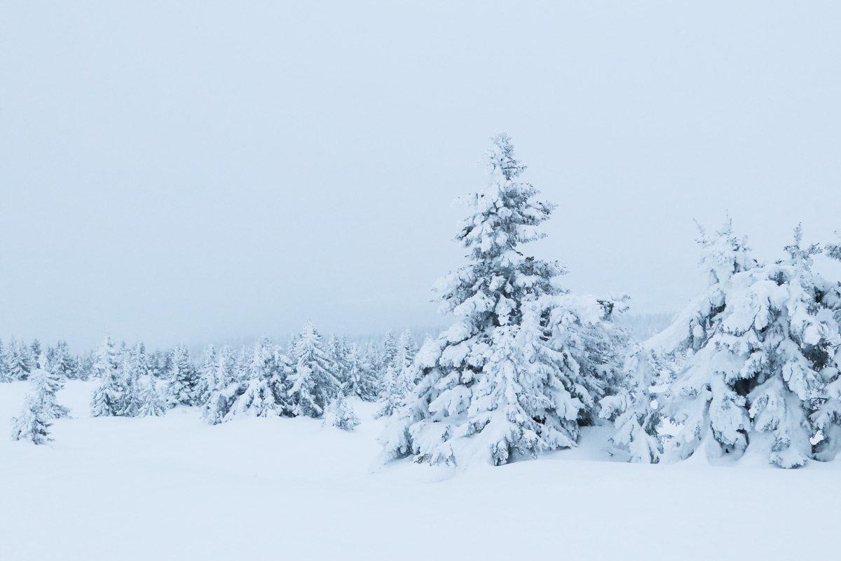 Weihnachten in Norwegen, Schneelandschaft