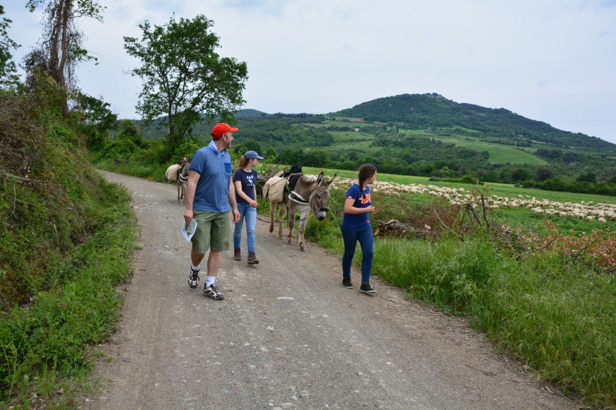 Eselwandern in der Toskana mit Kindern, Italien mit Kindern. Wandern mit Esel in Italien. Toskana Wandern mit Esel und Kindern.