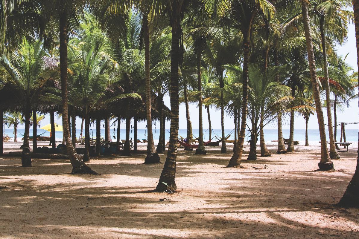 Strand und Palmen in Kolumbien
