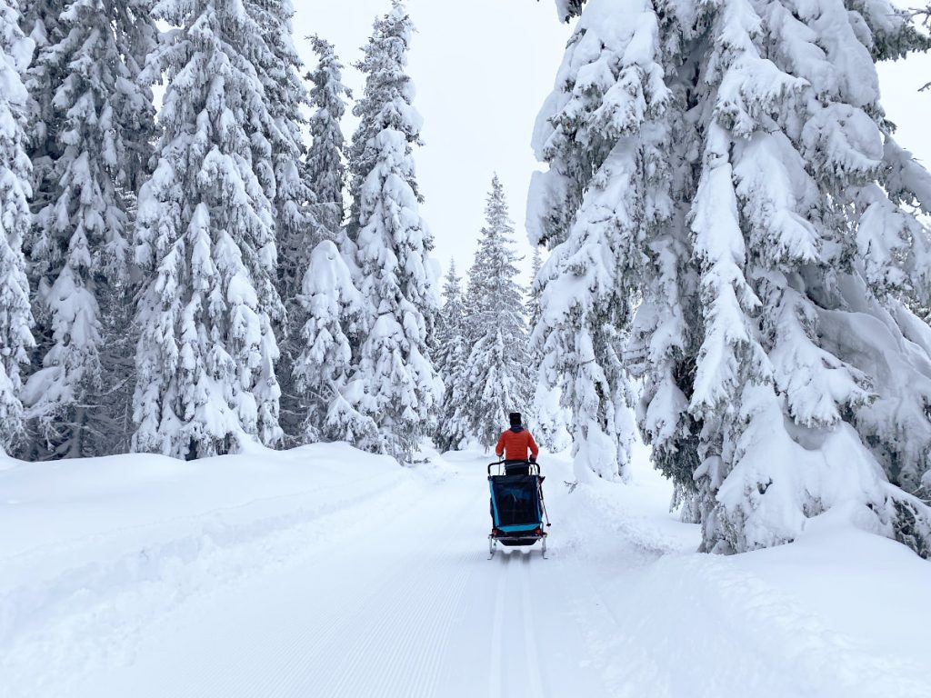 Langlaufen Norwegen Winter; wann beste Zeit; Langlaufgebiete; was anziehen; richtige Skiausrüstung, Langlaufen mit Kindern; wo übernachten; Norwegen Urlaub Langlauf
