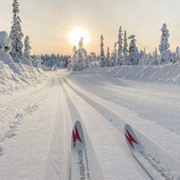 Langlaufen Norwegen – Unsere besten Tipps für den Skilanglauf Urlaub in Norwegen